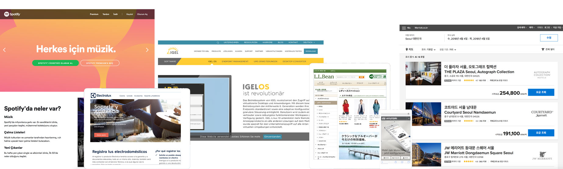 WebsiteTranslationExamples.jpg
